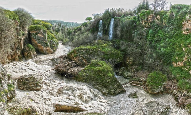 Río Genil en los Infiernos Altos